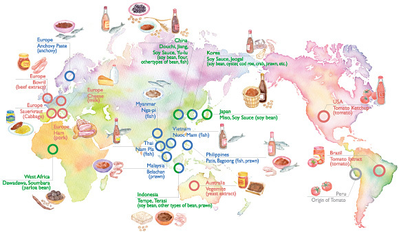 Grade 11 food and culture ms smith 39 s homepage - Different types of cuisines in the world ...